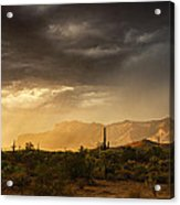 A Desert Monsoon Sunset  Acrylic Print