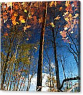 A Different Side Of Autumn Acrylic Print