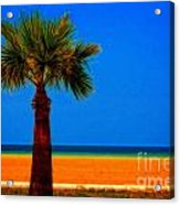 A Digitally Converted Painting Of A Lone Palm Tree At The Seaside Acrylic Print