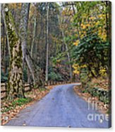 A Drive In The Country Acrylic Print by Paul Ward