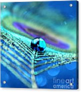 A Drop Of Mystery Acrylic Print