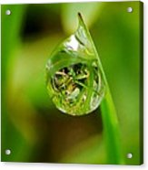 A Drop Of Water For Every Blade Of Grass Acrylic Print