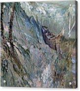 A Fantasy Storm Acrylic Print by Judy Paleologos
