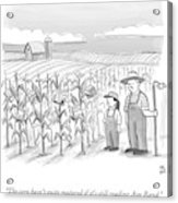 A Farmer And His Daughter Look At Cornstalks Who Acrylic Print by Paul Noth