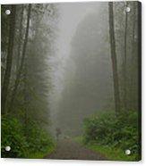 A Few Steps Into The Mist Acrylic Print