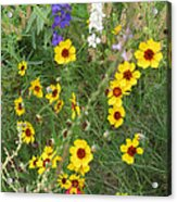A Field Bouquet Acrylic Print