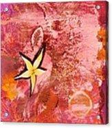 A Flying Star Flower Acrylic Print