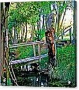 A Forgotten Delta Dock Acrylic Print