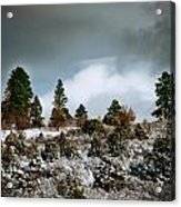 A Fresh Covering Of Snow Acrylic Print