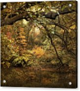 A Glimpse Of Autumn Acrylic Print