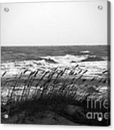 A Gray November Day At The Beach Acrylic Print by Susanne Van Hulst