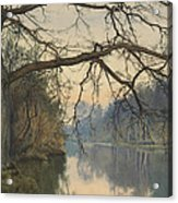A Great Tree On A Riverbank Acrylic Print