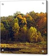 A Harvest Of Color Acrylic Print