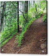 A Hiking Trail Goes Up Saddle Mountain Acrylic Print