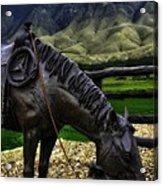 A Horse With No Name Acrylic Print