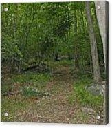 A Leisurely Stroll Through The Putnam County Veteran Memorial Park Woods Acrylic Print