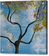 A Little All Over The Place Acrylic Print