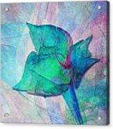 A Little Flower Acrylic Print