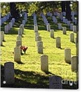 A Lone Remembrance Acrylic Print