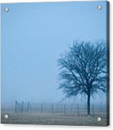 A Lone Tree In The Fog Acrylic Print