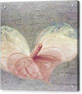 A Love Letter Acrylic Print
