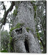 A Lowcountry Textural Study - Ode To Edvard Munck Acrylic Print