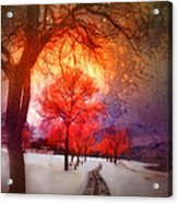 A Magic Winter Acrylic Print