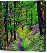 A Magical Path To Enlightenment Acrylic Print