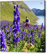 A Male Hiker In Sunny Flower Field Acrylic Print