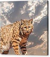 A Mighty Hunter Acrylic Print