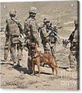 A Military Working Dog Accompanies U.s Acrylic Print