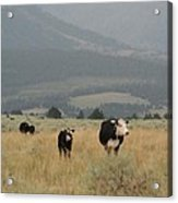 A Montana Memory Acrylic Print