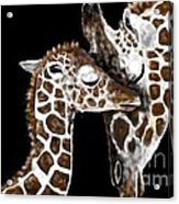 A Mother's Love - At Great Heights By Lcs Acrylic Print