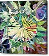 A New Sun Flower Acrylic Print by Mindy Newman