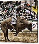 A Night At The Rodeo V8 Acrylic Print