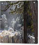 A North Woods Fairy Tale Acrylic Print by Mary Amerman