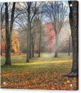 A November Morning Acrylic Print