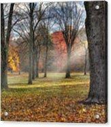 A November Morning Square Acrylic Print