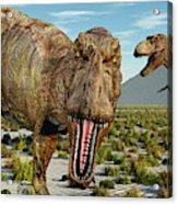 A Pack Of Tyrannosaurus Rex Dinosaurs Acrylic Print