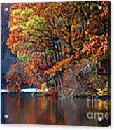 A Painting Barney's Autumn Pond Acrylic Print