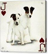 A Pair Of Jacks... Acrylic Print by Will Bullas