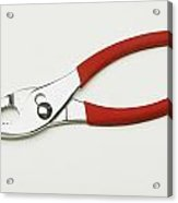 A Pair Of Pliers Acrylic Print
