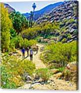 A Pause On Lower Palm Canyon Trail In Indian Canyons Near Palm Springs-california Acrylic Print