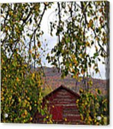 A Peak Of Fall Red Barn Acrylic Print
