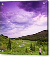A Person Stand In A Field Watching Acrylic Print