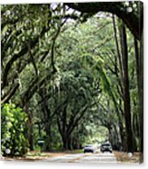A Pretty Tree Covered Road Somewhere On Hilton Head Island Acrylic Print