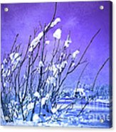 A Purple Winter Acrylic Print