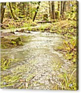 A River Of Green Acrylic Print