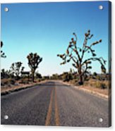 A Road Leads Through Joshua National Acrylic Print
