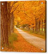 A Romantic Country Walk In The Fall Acrylic Print